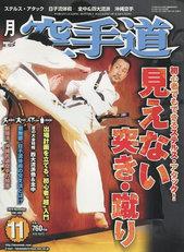 karatedo_2010_11_t.jpg